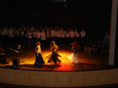 Spectacle musical valleroy 54 les amis des enfants for Valleroy 54