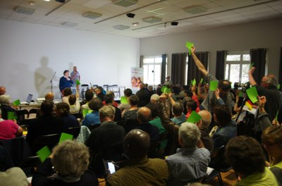 38 - Beaucoup de bulletins verts dans le public